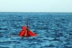 Tàu Trung Quốc truy đuổi, đâm chìm tàu cá ngư dân Quảng Ngãi