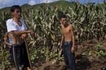 Chosun: Bình Nhưỡng tuyên truyền Hàn Quốc còn nghèo khổ hơn Triều Tiên