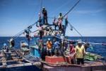 Trung Quốc tạm hoãn kế hoạch xây đảo ở Scarborough để lôi kéo Philippines