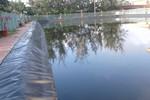 Trường Hoằng Trường phung phí hàng trăm triệu xây bể bơi như ao cá