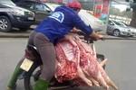 """Video: Hết hồn với màn chở lợn trần """"diễn xiếc"""" nguy hiểm trên phố"""
