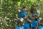 Kỹ năng sống giúp nhiều học sinh Quảng Ninh biết mặt con cá, giàn bầu