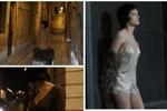 Clip quảng cáo Louis Vuitton bị gọi 'video tình dục nhơ bẩn'