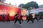 Biểu diễn võ thuật trong ngày chiến thắng Đống Đa tại TP Hồ Chí Minh