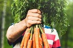 5 thực phẩm giúp cho đôi mắt khỏe mạnh