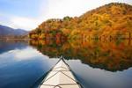 Điều kỳ diệu của mùa thu trên miền đất Nikko - Nhật Bản