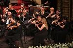 """Tận hưởng """"Mùa Giáng sinh An lành"""" với Dàn nhạc Giao hưởng Mặt Trời"""
