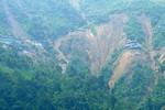 Tỉnh Lào Cai công bố lại số người thiệt mạng trong vụ sạt lở bãi vàng