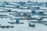 Toàn cảnh Hải Phòng, Quảng Ninh trước giờ bão về