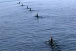 Iran tự đóng tàu ngầm nội địa mới