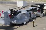 Nhật Bản sẽ mua thêm 17 máy bay MV-22 Osprey của Mỹ