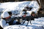 Ảnh trong ngày: Tiểu đoàn bộ binh quân đội Áo tập trận trong tuyết
