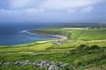Bài dự thi số 86: Ireland - Đến và trải nghiệm