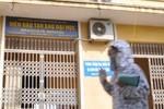 Lộ thêm sai phạm vụ nâng điểm cao học ở ĐH Nông nghiệp Hà Nội