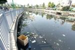 6 triệu người dân Việt Nam mắc bệnh vì... nước bẩn