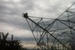Chính phủ chỉ đạo làm rõ vụ đổ cột điện đường dây 500kV