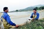 Chuyển 3 đơn vị sự nghiệp công lập tỉnh Quảng Ninh thành Công ty cổ phần