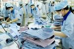 Đầu tư hơn 3 triệu USD nâng cao vị thế kinh tế của phụ nữ trong doanh nghiệp