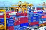 Xử lý hàng hóa do người vận chuyển lưu giữ tại cảng biển