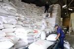 Hỗ trợ gần 1.700 tấn gạo cho nhân dân 2 tỉnh Quảng Bình và Sóc Trăng