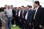100 nghìn tỷ đồng hỗ trợ phát triển nông nghiệp ứng dụng công nghệ cao