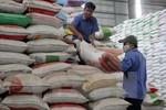 Chính phủ hỗ trợ gạo cho 8 tỉnh