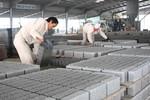 Sử dụng tro, xỉ của nhà máy nhiệt điện để sản xuất vật liệu xây dựng