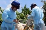 Bộ Y tế yêu cầu tăng cường công tác phòng chống dịch tại các địa phương
