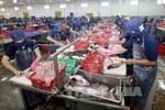 Điều kiện xuất khẩu sản phẩm cá Tra