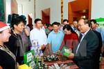 3 định hướng phát triển ngành dược liệu Việt Nam