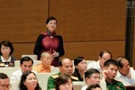 """Đại biểu Quốc hội Nguyễn Thị Quyết Tâm: """"Phát biểu như thế là thiếu trách nhiệm"""""""