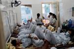Hơn 50 nghìn trường hợp bị sốt xuất huyết, 15 người đã tử vong