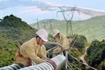 Bộ Tài chính tặng bằng khen Tổng Công ty Truyền tải điện Quốc gia