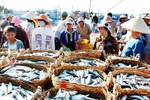 Thủ tướng duyệt chi hỗ trợ 4 tỉnh miền Trung