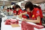 Việt Nam đẩy mạnh hợp tác thương mại, đầu tư với các nước đối tác chiến lược
