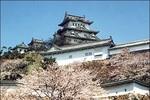 """""""Các nhà lãnh đạo trẻ"""" không thể bỏ qua học bổng du học Nhật 2013"""