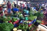 Hết mưa bão, tiểu thương khẳng định: Giá rau xanh vẫn tiếp tục đắt