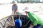 Ngư dân miền trung phấn khởi vì thông tin biển đã sạch