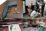 Tết Giáp Ngọ 2014: Gia tăng tội phạm giết người
