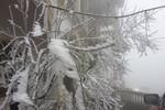 Hà Nội đón Valentine lạnh 8 độ C, miền Bắc rét đậm, rét hại