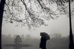 Hôm nay, Hà Nội mưa và rét đậm