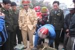 Phát hiện xe khách chở 50kg rắn cực độc, 60 kg rùa vàng