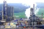 Bắt đối tượng lừa đảo tìm việc làm tại Cty TNHH Lọc hóa dầu Nghi Sơn