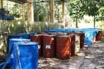 Vụ Nicotex ThanhThái chôn thuốc sâu:UBND tỉnh khen thưởng người tố cáo