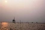 Tàu chở 20 ngư dân chìm ở vùng biển Thanh Hóa, 1 người chết