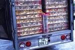 Công an bắt vụ vận chuyển 15 nghìn con gà giống không rõ nguồn gốc