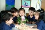 Thanh Hóa tạm dừng hoạt động kỹ năng sống trong nhà trường
