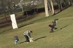 Video: Đại bàng bắt cóc trẻ con tại Canada