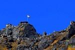 Trung Quốc, Ấn Độ cùng rút quân khỏi khu vực tranh chấp