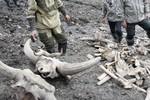 Nga phát hiện xác voi ma mút cái khổng lồ vẫn còn máu